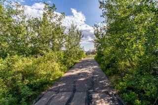 Photo 45: 17136 5 Avenue in Edmonton: Zone 56 House for sale : MLS®# E4259023