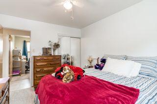 Photo 21: 4120 55th Street: Wetaskiwin House for sale : MLS®# E4258989