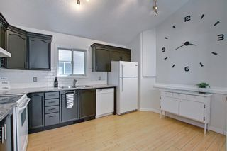 Photo 15: 66 Erin Green Way SE in Calgary: Erin Woods Detached for sale : MLS®# A1094602