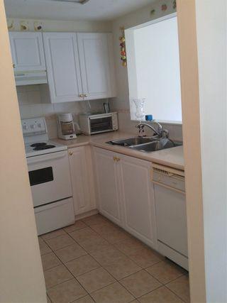 Photo 7: 209 1650 GRANT Avenue in Port Coquitlam: Glenwood PQ Condo for sale : MLS®# R2166638