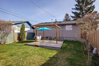 Photo 28: 4115 DOVERBROOK Road SE in Calgary: Dover Detached for sale : MLS®# C4295946