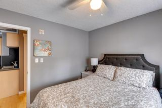 Photo 4: 202 343 4 Avenue NE in Calgary: Crescent Heights Apartment for sale : MLS®# A1118718