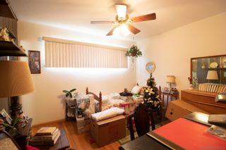 Photo 24: KENSINGTON House for sale : 3 bedrooms : 4825 Kensington Dr. in San Diego