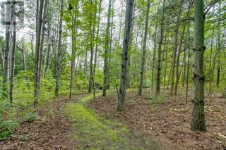 Photo 40: 52 AUTUMN Road in Warkworth: House for sale : MLS®# 40171100