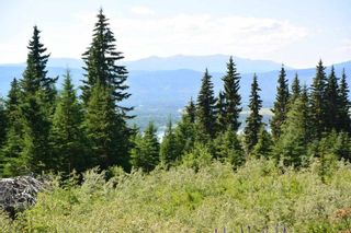 "Photo 23: LOT 1 HISLOP Road in Smithers: Smithers - Rural Land for sale in ""Hislop Road Area"" (Smithers And Area (Zone 54))  : MLS®# R2491414"