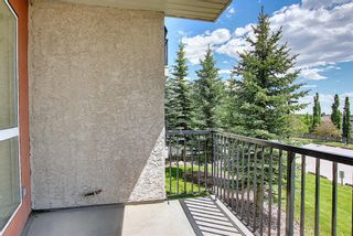 Photo 24: 202 69 Springborough Court SW in Calgary: Springbank Hill Apartment for sale : MLS®# A1123193