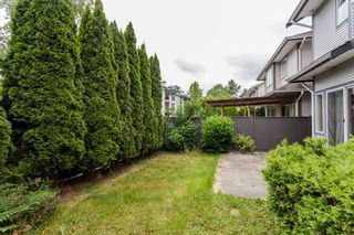 Photo 34: 6146 195 Street in Surrey: Cloverdale BC House for sale (Cloverdale)  : MLS®# R2277304