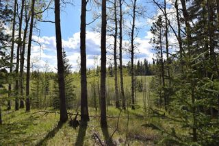Photo 17: TWP Rd 310: Rural Mountain View County Land for sale : MLS®# C4292828