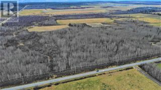 Photo 14: 5675 BLACKBURN ROAD in PG Rural South (Zone 78): Vacant Land for sale : MLS®# C8034975
