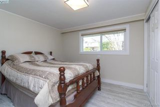 Photo 10: 4033 Cedar Hill Rd in VICTORIA: SE Mt Doug House for sale (Saanich East)  : MLS®# 810108