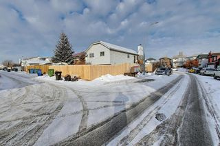 Photo 32: 163 Erin Meadow Green SE in Calgary: Erin Woods Detached for sale : MLS®# A1077161