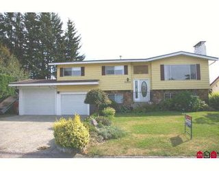 Photo 1: 46488 BRICE Road in Chilliwack: Fairfield Island House for sale : MLS®# H2903339