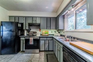 Photo 15: 20280 47 Avenue in Langley: Langley City House for sale : MLS®# R2567396