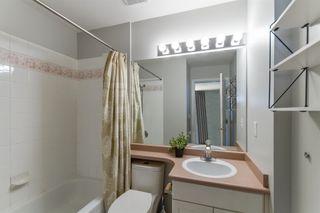 Photo 13: 33 11870 232 Street in Maple Ridge: Cottonwood MR Townhouse for sale : MLS®# R2610534