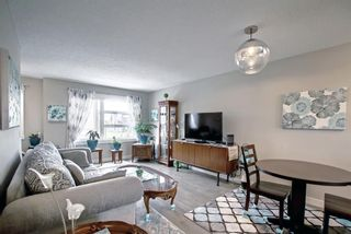 Photo 13: 1002 2461 Baysprings Link SW: Airdrie Row/Townhouse for sale : MLS®# A1151958