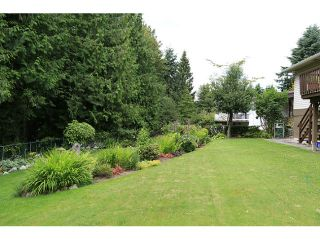Photo 20: 7076 FIELDING Court in Burnaby: Government Road House for sale (Burnaby North)  : MLS®# V1030816