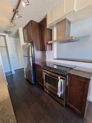 Photo 4: 305 4455C Greenview Drive NE in Calgary: Greenview Apartment for sale : MLS®# A1133635