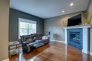 Photo 11: 4607 19 Avenue NW in Calgary: Montgomery Semi Detached for sale : MLS®# A1094225