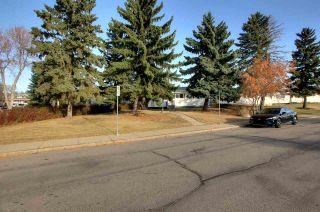 Photo 42: 14227 58 Street in Edmonton: Zone 02 House for sale : MLS®# E4239189