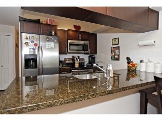 Photo 10: # 149 5660 201A ST in Langley: Langley City Condo for sale : MLS®# F1426511