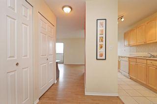 Photo 12: 310 755 Hillside Ave in : Vi Hillside Condo for sale (Victoria)  : MLS®# 869551