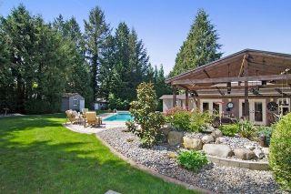 Photo 16: 20288 124 Avenue in Maple Ridge: Northwest Maple Ridge House for sale : MLS®# R2060570