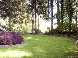 Photo 33: 4875 GREAVES Crescent in COURTENAY: CV Courtenay West House for sale (Comox Valley)  : MLS®# 701288