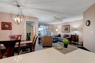 Main Photo: 216 911 Rabbit Hill Road in Edmonton: Zone 14 Condo for sale : MLS®# E4261740