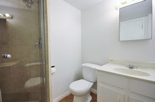 Photo 13: 33 Edgeburn Crescent NW in Calgary: Edgemont Detached for sale : MLS®# A1119029