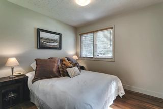 Photo 25: 199 Cardiff Drive NW in Calgary: Cambrian Heights Detached for sale : MLS®# A1127650