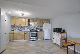 Photo 31: 155 Templevale Road NE in Calgary: Temple Detached for sale : MLS®# A1119165