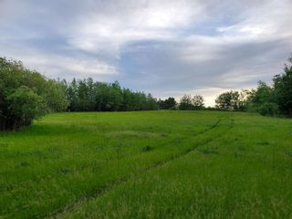 Photo 4: 53145 RGE RD 223: Rural Strathcona County Rural Land/Vacant Lot for sale : MLS®# E4250369