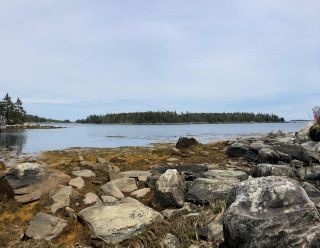 Photo 15: Lot Mushaboom Road in Mushaboom: 35-Halifax County East Vacant Land for sale (Halifax-Dartmouth)  : MLS®# 202114485