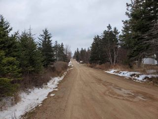 Photo 6: LOT 4 Hampton Mountain Road in Hampton: 400-Annapolis County Vacant Land for sale (Annapolis Valley)  : MLS®# 202101572