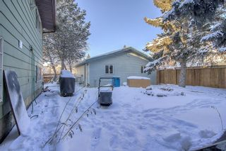 Photo 32: 4 Abergale Way NE in Calgary: Abbeydale Detached for sale : MLS®# A1068236