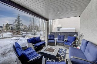 Photo 43: 27 Elgin Estates Hill SE in Calgary: McKenzie Towne Detached for sale : MLS®# A1071276