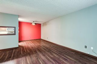 Photo 6: 114 11 Dover Point SE in Calgary: Dover Apartment for sale : MLS®# A1125915