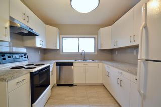 Photo 11: 431 21 Avenue NE in Calgary: Winston Heights/Mountview Semi Detached for sale : MLS®# A1135304
