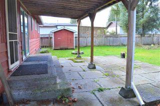 Photo 15: 11613 STEEVES Street in Maple Ridge: Southwest Maple Ridge House for sale : MLS®# R2556127