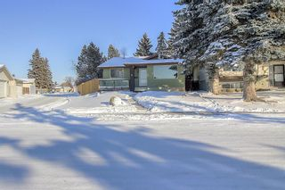 Photo 3: 4 Abergale Way NE in Calgary: Abbeydale Detached for sale : MLS®# A1068236