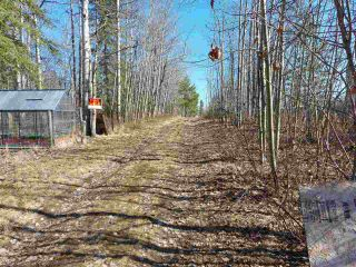 Photo 3: LOT 19 NESS LAKE Road in Prince George: Ness Lake Land for sale (PG Rural North (Zone 76))  : MLS®# R2572222