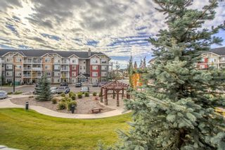 Main Photo: 3206 155 Skyview Ranch Way NE in Calgary: Skyview Ranch Apartment for sale : MLS®# A1151761