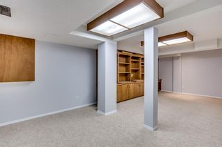 Photo 32: 189 Macewan Valley Road NW in Calgary: MacEwan Glen Detached for sale : MLS®# A1146712