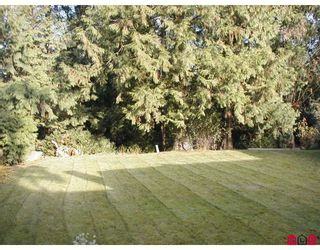 Photo 5: 10972 MCADAM Road in Delta: Nordel House for sale (N. Delta)  : MLS®# F2728663