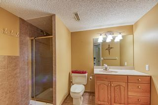 Photo 44: 151 Edgebrook Close NW in Calgary: Edgemont Detached for sale : MLS®# A1131174