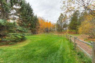 Photo 43: 74 53103 RGE RD 14: Rural Parkland County House for sale : MLS®# E4265668