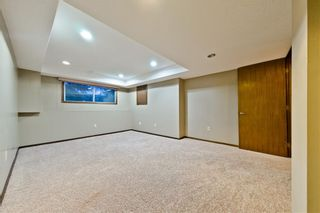 Photo 20: EDGEMONT ESTATES DR NW in Calgary: Edgemont House for sale : MLS®# C4221851