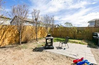 Photo 45: 2 SEQUOIA Bend: Fort Saskatchewan House for sale : MLS®# E4243129