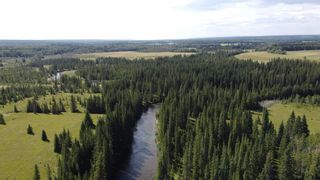 Photo 6: 5-31539 Rge Rd 53c: Rural Mountain View County Land for sale : MLS®# A1024431