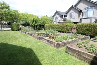 """Photo 17: 14 4740 221 Street in Langley: Murrayville Townhouse for sale in """"Eaglecrest"""" : MLS®# R2273734"""